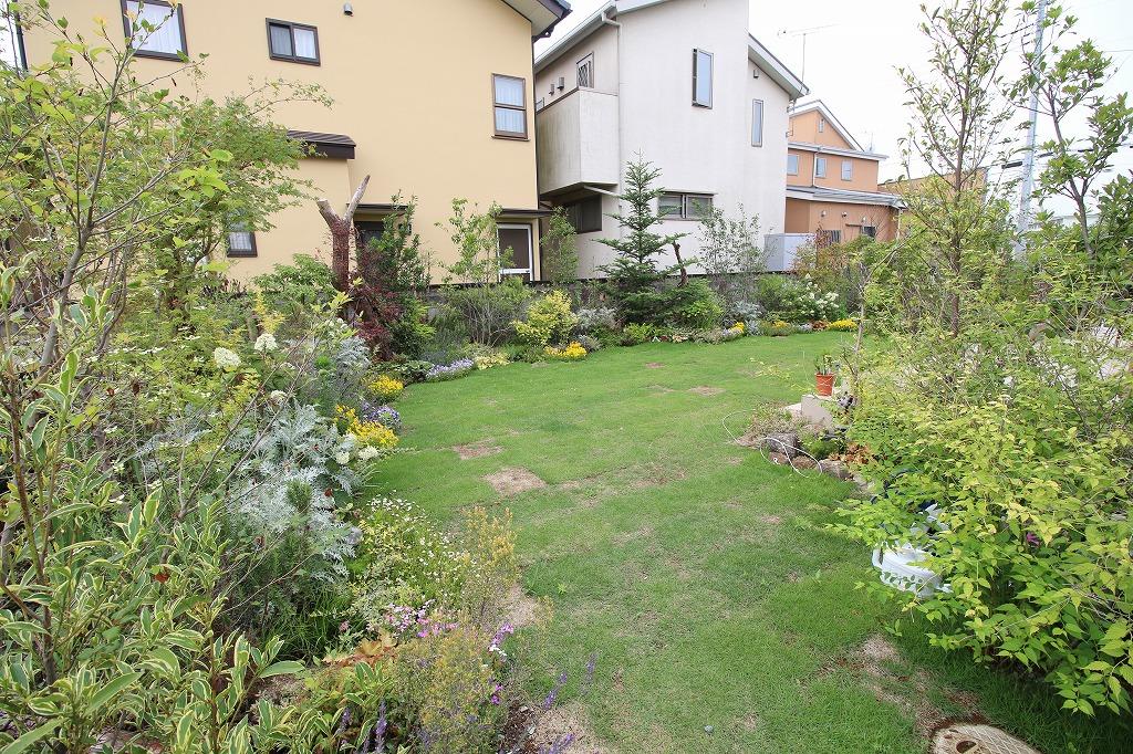 緑あふれる森のようなお庭(after)