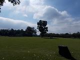 スマートハイムプレイス本庄市五十子(周辺環境)本庄総合公園