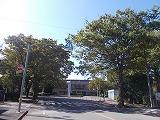 スマートハイムプレイス桐生(周辺環境)運動公園
