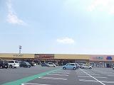 スマートハイムシティ菅谷(周辺環境)とりせん菅谷ショッピングモール