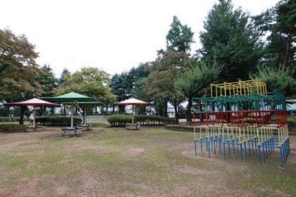 スマートハイムシティ住吉ガーデン北(周辺環境)大泉中央公園